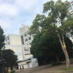 横浜市立南高校附属中学校の評判と現在地 2017
